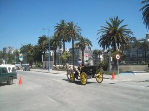 Tour Viña del Mar, Tour Valparaiso, Tour Viña del Mar y Valparaiso