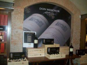 Tour Viñas y Bodegas de Chile